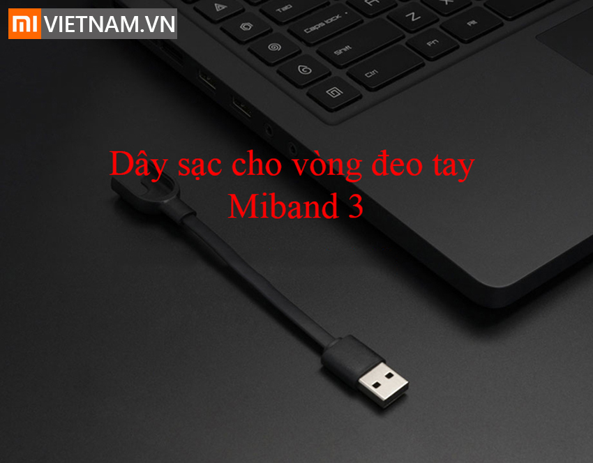 MIVIETNAM-DAY-SAC-CHO-VONG-DEO-TAY-MIBAND-3